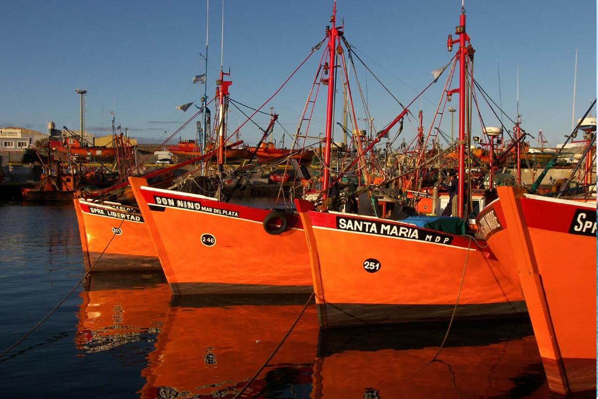 puerto_por_soluciones_turisticas.jpg